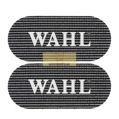 Wahl Hair Grip 2db/cs.